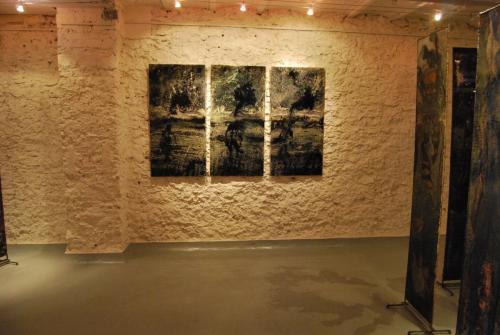 2013 galerie-Corcia-Paris 7